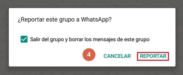 Cómo reportar un grupo de WhatsApp paso 4