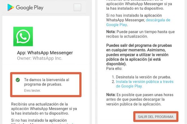 WhatsApp Beta Paso 4