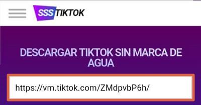 Descargar vídeos de TikTok sin marca de agua con SSSTikTok paso 4